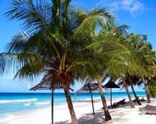 Наиболее высокие ставки аренды отмечаются на западном побережье острова Барбадос