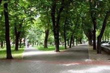 Застройка Павловского сквера
